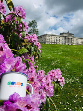 BIPRA mug in grounds of Stormont